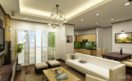 Cần cho thuê căn hộ mới 1 PN, 60m2, Xi Grand Court, giá 13 triệu/tháng, 60m2, 1 phòng ngủ, 1 toilet