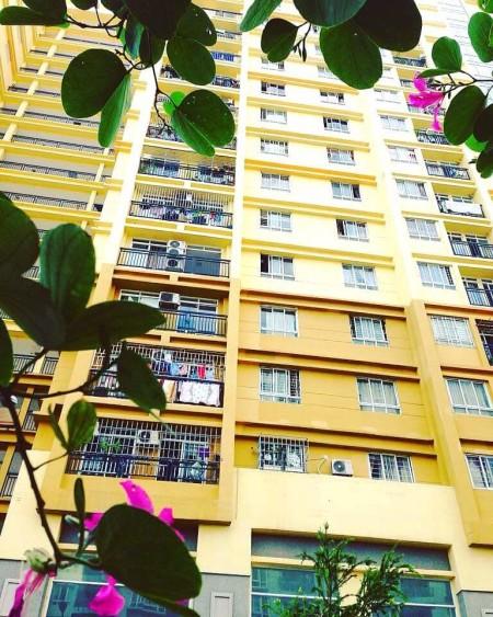 Cho thuê căn hộ Petroland, Dt 84m2, 3PN,2wc,có nội thất: 2giường nệm,TV, tủ lạnh.. 0918860304, 84m2, 3 phòng ngủ, 2 toilet