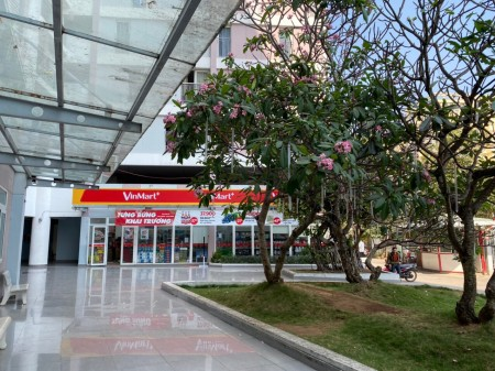Cho thuê căn hộ Thủ Thiêm Xanh Q2 Dt 60m2 2pn 2wc, pk bếp. Nhà trống, nội thất cơ bản. Giá 6.5 triệu/th. 0918860304, 61m2, 2 phòng ngủ, 2 toilet