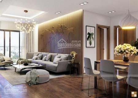 Richstar Tân Phú cho thuê căn hộ 65m2, 2 PN, view đẹp thoáng, có sẵn đồ dùng, giá 9 triệu/tháng, 65m2, 2 phòng ngủ, 2 toilet