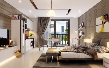 Cho thuê căn hộ Soho C2.21 Vinhomes D'Capitale Trần Duy Hưng: 39m2, 1PN, đủ đồ, 9tr (MTG), 39m2, 1 phòng ngủ, 1 toilet