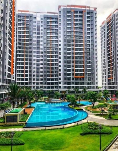 cho thuê căn 1+1pn safira khang điền quận 9 view sông , giá tốt , liên hệ : 0906895794, 49m2, 1 phòng ngủ, 1 toilet