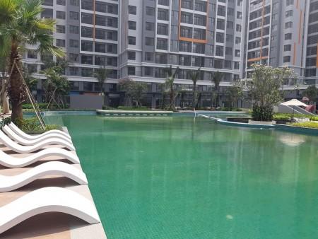 Cho thuê căn hộ Safira, 50m2/1PN giá 5.4tr; 67m2/2PN giá 6.5tr; 88m2/3PN giá 8tr; 153m2 giá 21tr, LH 0906244927, 49m2, 1 phòng ngủ, 1 toilet