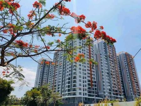 Hot cho thuê nhiều căn Safira Khang Điền, giá chỉ 6,5 triệu/tháng, liên hệ ngay 0906244927, 49m2, 1 phòng ngủ, 1 toilet