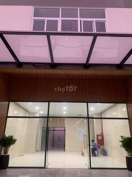 Cho thuê căn hộ cao cấp Topaz Elite, 78m2, 2PN, 2WC, Nhà mới, sạch sẽ, view đẹp, nội thất cơ bản, 78m2, 2 phòng ngủ, 2 toilet