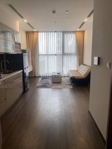 Cho thuê căn hộ cao cấp, sang trong, full nội thất trong khu Chung cư Vinhomes Symphony Riverside, 43m2, 1 phòng ngủ, 1 toilet