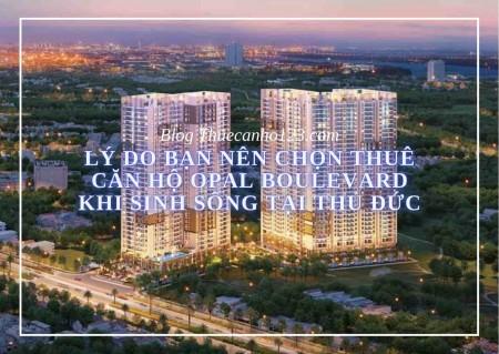 Lý do bạn nên chọn thuê căn hộ Opal Boulevard khi sinh sống tại Thủ Đức