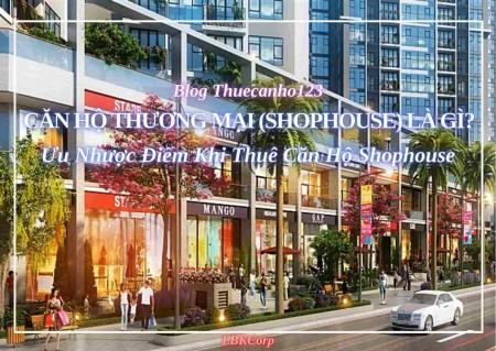 Căn hộ thương mại (Shophouse) là gì? Ưu nhược điểm khi thuê căn hộ Shophouse